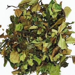 Thé blanc Pai Mu Tan